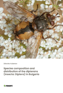 Species composition and distribution ...