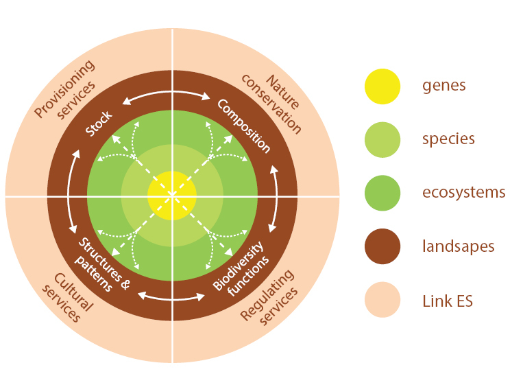 Mapping ecosystem services figure 1 fandeluxe Gallery